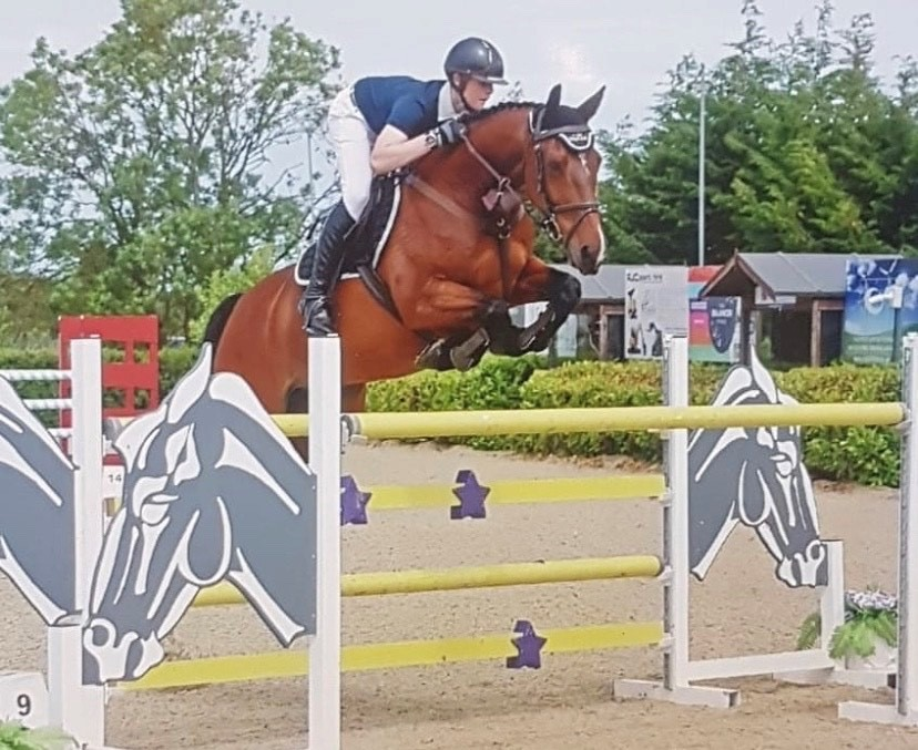 Harry's rise to show jumping stardom